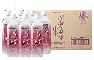龍石水500ミリリットルペットボトル 24本