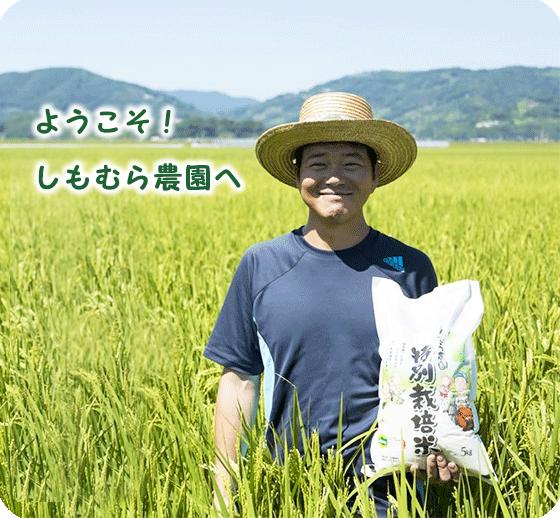 佐賀平野でとれるおいしいお米