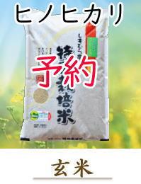 yoyaku-H05-G