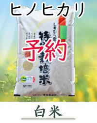 yoyaku-H10-G