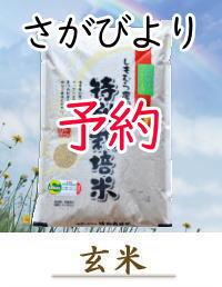 yoyaku-S10-G