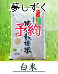 yoyaku-Y02-H